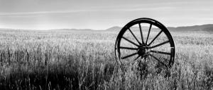Wagon Wheel - AHE